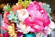 Flowers / by Brandie Hayden