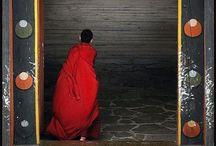 Buddha / by Terri Laird