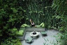 Jardin / by Meikel Reece
