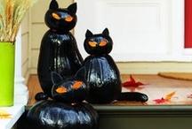 Halloween  / by Kim Bautista
