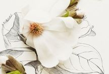 My secret botanical fascination