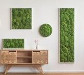 Green walls by styleGREEN / The German team at styleGREEN creates handmade green walls and plant pictures. Scandinavian Design House brings their works of art in Romania!