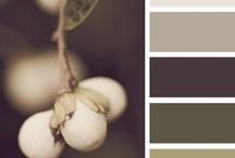 Color combos / by Deanna Agnos