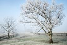 Kentucky Scenery / Great photographs of beautiful Kentucky.