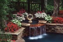 Garden / Plant a garden is to believe in tomorrow. Audrey Hepburn / by agripina