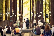 If I were to plan a wedding.... / by Alice Kimber-Bell