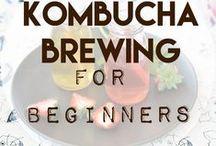 Kombucha & Water Kefir / Kombucha