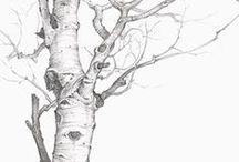 Art: Drawing / by Sara L