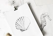 draw / drawings & sketches, hand drawn by inkylines.nl