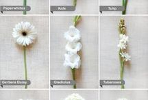 florals. / Bouquets, arches, aisles, tables and more. If you want to put flowers somewhere in your wedding, you'll find inspiration here!