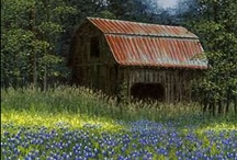 Barns / It's a Good Old Fashioned Barn Raising / by Julia Jones