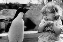 Little Ones / babies, kids, children, you name it! / by Natasha Gladman