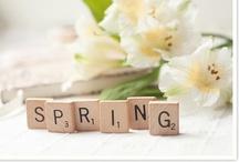 Spring / by Natasha Gladman