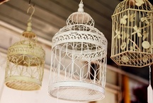 Birdcages / by Julia Jones