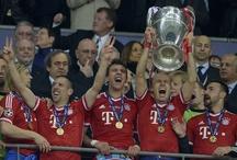 Champions 2012/13