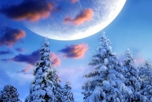 Winter, Snow and Ice / by Kay VanDyke