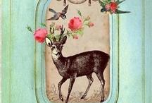 Love deer / by Audrey Heikoop-van den Hurk