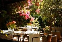 Acontraluz | Grupo Tragaluz / Un jardín que es un restaurante, un restaurante que es un jardín. Una celebración del apetito y la conversación, un dejarse llevar por las sugerencias. Una cocina con raíces pero viajera.