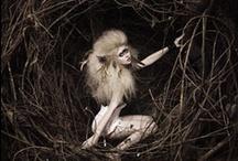 Moodboard Nature Shoot / Inspirerende beelden voor het thema natuur voor de shoot van 15 juni. (Met vrouwelijke modellen.)