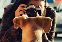 Adorable Pets ♥ / by Zaira Varela