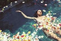 beauty / by Silvia Santucci