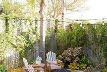 Garden & Outdoor / Outdoor spaces, gardens, and gardening tips/DIY.
