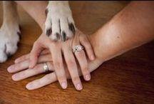 Wedding Phototography / by Stefanie Singleton