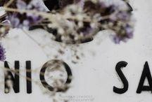 ※BLOGS※