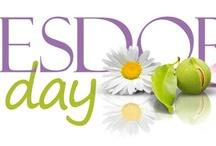 ESDOR Day 2012 / by ESDOR