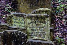 Gravely / by Gypsy Blu