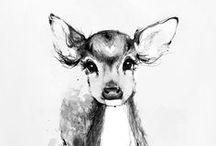 Illustration / by Kathleen Ullman  | Twig & Thistle