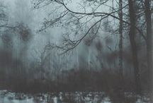 Hushed Nature / Soft, subdued, earthy tones. / by Corinne Meyer