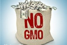 GMOs, Preservatives & Additives