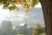 Das Leben auf dem Land / Landleben, Leben auf dem Land, Landliebe, Farm Life, Country Life, Natur, Landschaft, Garten, Tiere, Kindheit, Erinnerungen
