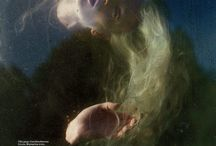 Joanna Hawrot vintage photoshoot