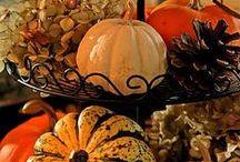 Happy Fall / by Audra Iannarone
