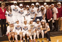 2012 WNBA Champions / In a Finals series that stirred emotions all around central Indiana, the Fever put a hammerlock on the league title over the Minnesota Lynx at Bankers Life Fieldhouse. Indiana eliminated the 2011 champs by winning three of the first four games in the best-of-five WNBA Finals.