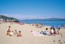 Snowdonia's dog-friendly beaches