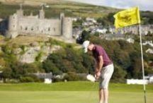 Snowdonia Golf