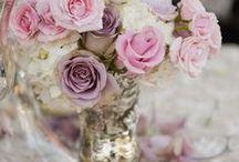 America Wedding 6.5.15 / by Analisa Joy