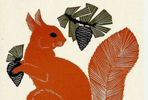 Squirrel Illustrations