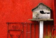 Design - Birdhouses / Bird items