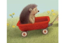 Art - Hedgehog items / Picture and items related to hedgehogs / by Rusty Tricycle