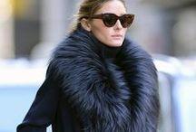 Fly Furs / by Cheryl Taylor