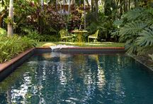 cool swimming pools / by Janell