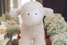Baby Shower Project / by Pretty Fluffy