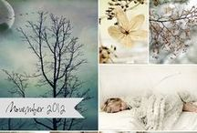 Year 2012 by Mona's Picturesque
