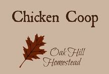 Chickens on the Homestead / All about chickens: hens for eggs, birds for meat, incubating eggs, and the best chicken keeping tips, hints and information.