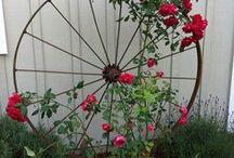 Garden - roses / by Kathi OakHillHomestead