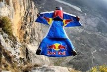 RedBull gives me Wings!! / by Michele Noh